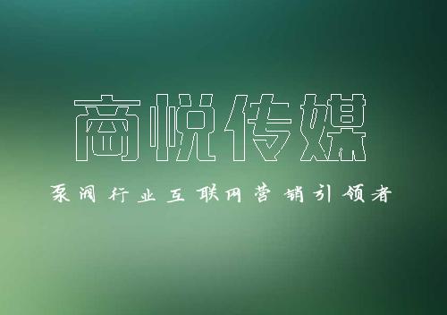 -低至5块钱泵阀关键词优化,新的一年企业网络推广走起~